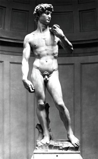 "Michelangelo's David is one of the earliest representations of pubic hair in art. The famous statue has also inspired a popular below-the-belt hairstyle, known in Britain as ""the David."""