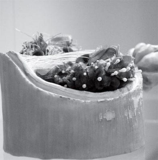"Melanie Laurenco's sculpture, ""I Ate the Source,"" draws comparisons between the human body and vegetables."