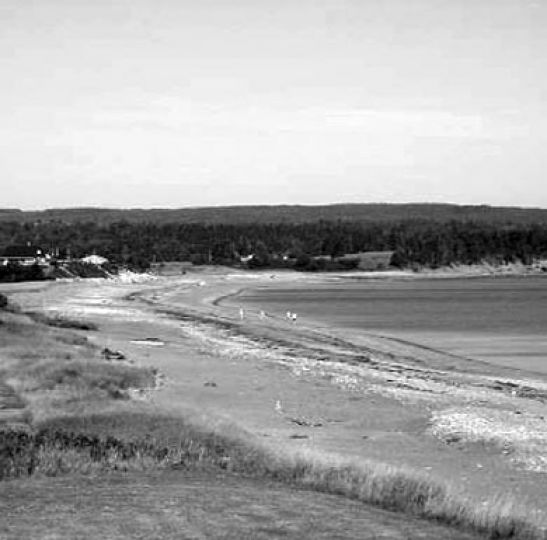 The shores of Antigonish: perfect for swims and Coronas.