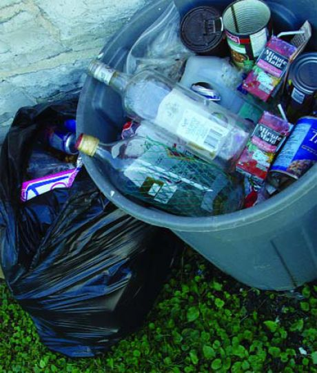 How good-looking does garbage have to be to attract the garbage man?