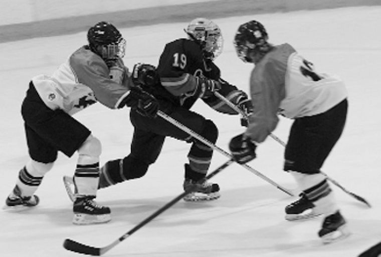 Women's hockey remains in third place in the OUA.