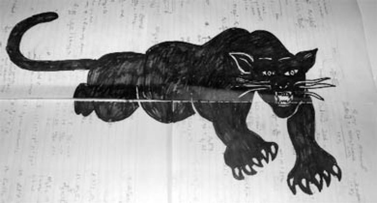 """This pencil and felt marker depiction of a panther was at the centre of a controversy between an AMS Deputy Human Rights Commissioner and the """"Art in Colour"""" event organizer."""