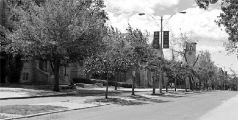 Things will look a little different on University Avenue thanks to some aesthetically concerned alumni.