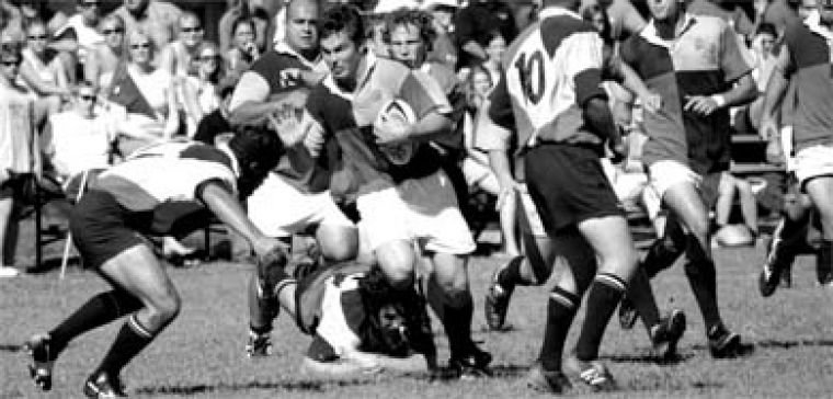 """John """"Moose"""" Enright, a third-year second row player, scatters the ferocious Badger defence."""