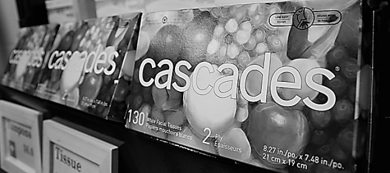 Cascades paper products are made in Quebec using 100 per cent recycled paper.