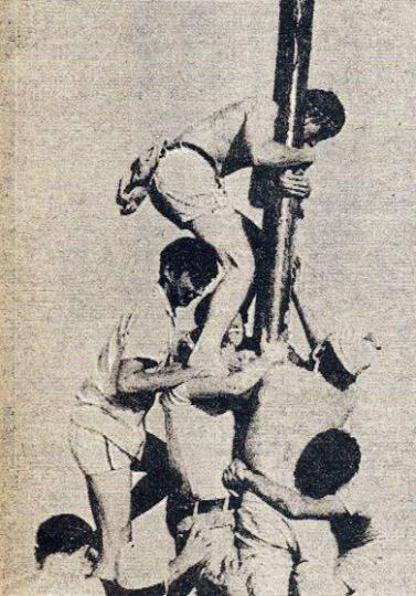 Sci '73 students fear the pit as they climb the grease pole during frosh week in 1969.