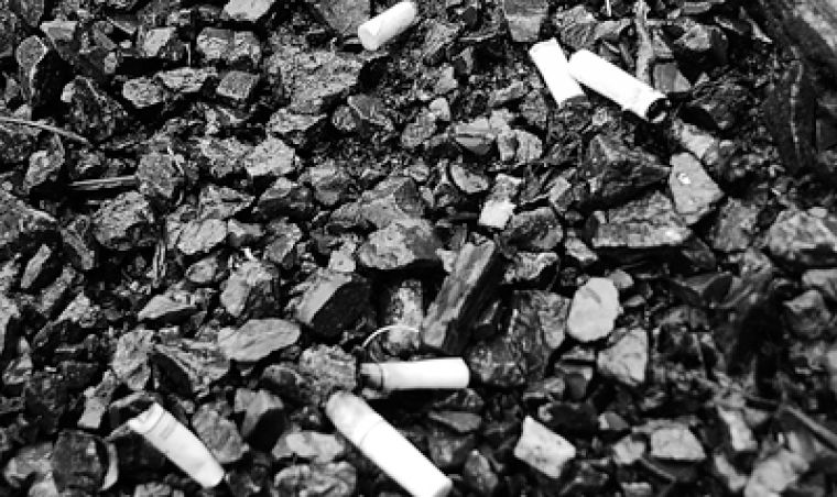 Millions of cigarette butts are littered on the ground, but contrary to popular belief, they aren't biodegradable.