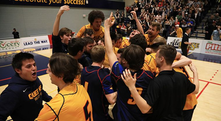The Gaels celebrate after winning the final point.