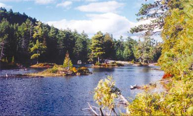 Algonquin Park, the largest provincial park in Ontario, is home to many a happy camper.