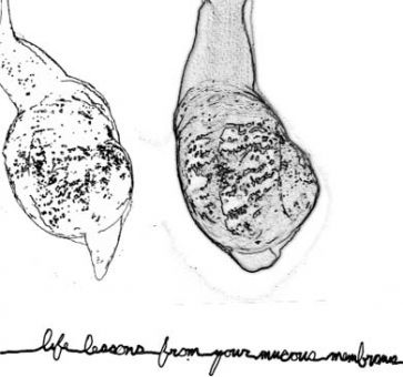 Cover art from Life Lessons from Your Mucous Membranes by Devon Lougheed.