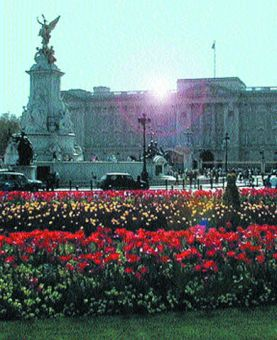 Buckingham Palace in the heart of London.