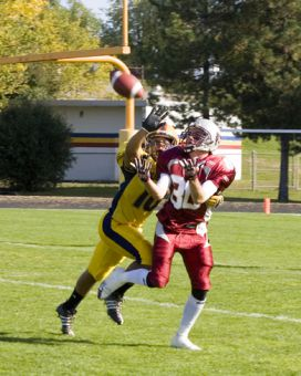 Gaels' defensive back David Rooney knocks down a pass intended for Ottawa's Brad Sinopoli.