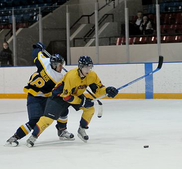Gaels' forward David Chubb tries to fight off a hook from Ryerson's Peter Drikos Friday night. Queen's beat the Rams 4-3.