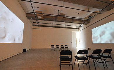 Jacob's destabilizing and transformative exhibit has a new home on the walls of Union Gallery.