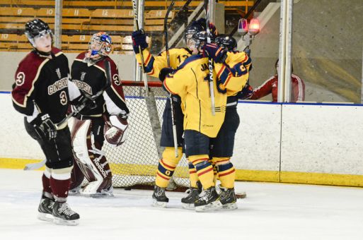 The men's hockey team celebrates a goal during Friday's win over the Concordia Stingers.