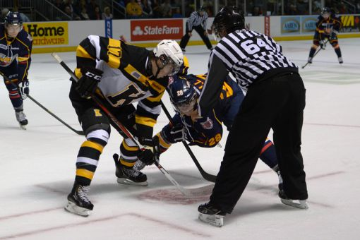 The Frontenacs finished last in the OHL's Eastern Conference last year, but Kingston hockey fans could witness an improvement this season.