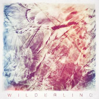 The four guys of Wilderling all go to university in Montreal, but are originally from Kingston.