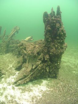 Guenter's Wreck is thought to be the remains of HMS Montreal.
