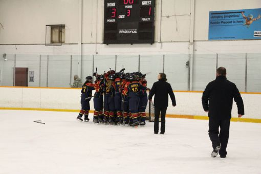 The Gaels bested the Guelph Gryphons 3-1 on Feb. 22 for the two-game series sweep in the OUA semifinals.