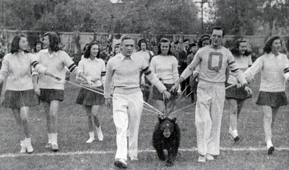 When the bear arrived in the 1920s, Boo Hoo became quite the spectacle on campus. He usually led crowds of cheerleaders and supporters to cheer on the Gaels.