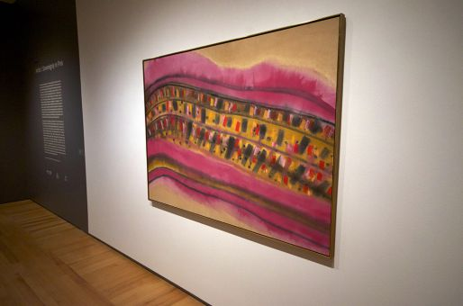 Arctic I: Sovereignty in Pink challenges traditional perceptions of the North.