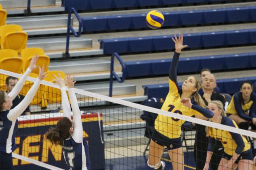 Their five-set loss to the York Lions snapped the Gaels' six-game winning streak.