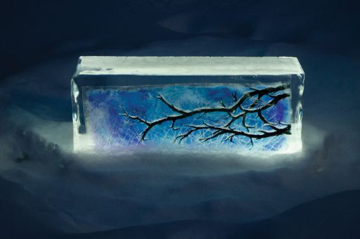 Froid d'Art showcases illustrations frozen inside blocks of clear ice.