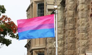The purple middle of the Bi Flag represents attraction to both sexes.