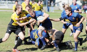 The Gaels defeated the Waterloo Warriors and the RMC Paladins this past week at Kingston Field.