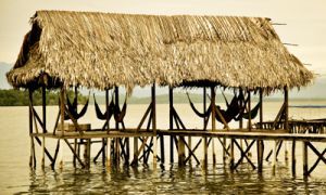 Cheap travel makes it possible to visit a different beach or reef every day while staying in Bocas Del Toro, Panama.