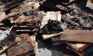 Tammy McGrath's Voir Dire depicts bat-like creatures floating above the ashes of 1,400 burned books.