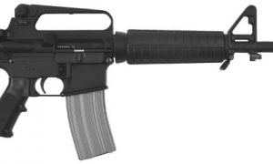 A Bushmaster AR-15 (above) was used at the Newtown, Connecticut school shootings.
