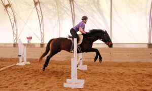 Tara Russell, ArtSci '13, takes her horse Cass through a jumping exercise at DreamCatcher Farm last Saturday.