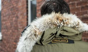 The hood on the popular Canada Goose jacket is trimmed with coyote fur.