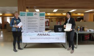 Queen's Animal Defence held a public audit of Queen's.