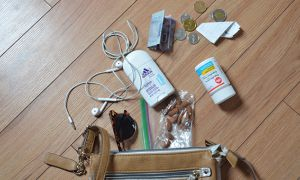 Essentials to carry around in your purse.