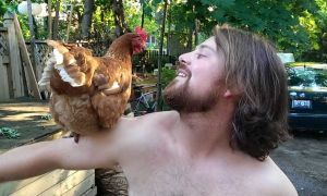 David Timan, Sci '13, and his favourite pet chicken, Fluffy.