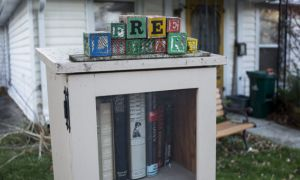 The little book library at 8 Redan St.