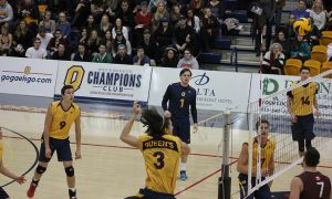 The Gaels sit third in the OUA with a 8-3 record.