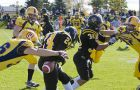 Queen's Tim Poffley strips the ball from Waterloo's Spencer Bradbury Saturday. The Gaels won 38-24 to improve to 8-0.