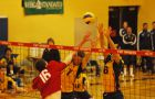 Gaels Darren Edwards (7) and Alex Oneid (6) attempt a block against the Paladins' Kevin Caverly Wednesday. Queen's won 3-0.