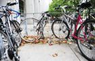 """""""I got offered a $450 bike for 20 bucks,"""" said bike mechanic Robin Parsons. """"[He wanted] to buy himself two grams of weed."""""""