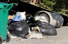 The one garbage bag bylaw has posed a challenge for students dealing with garbage illegally dumped on their properties.