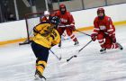 Allie Biglieri scored in the first period against York on Saturday.