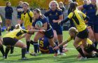 The Gaels finished 8-3 overall, including an OUA semi-final win over Waterloo.