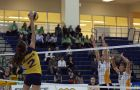 Outside hitter Kelsey Bishop's 23 points led the Gaels last weekend.