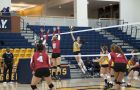Despite finishing above .500 for the sixth straight year, women's volleyball failed to make the OUA playoffs.